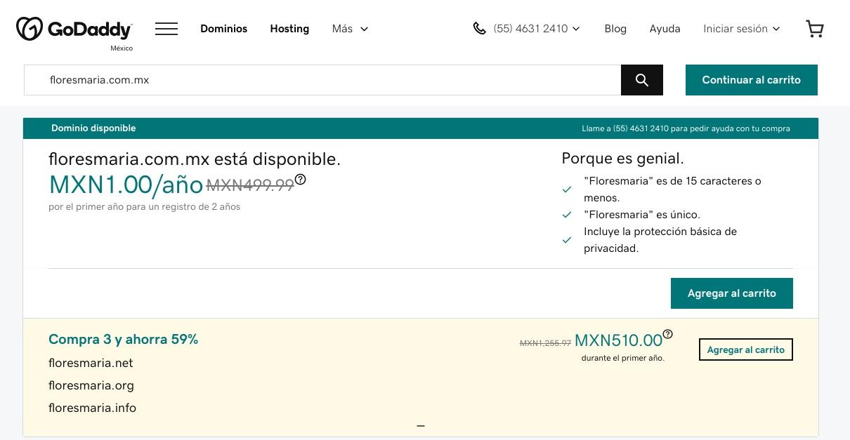 Ejemplo de búsqueda de dominio de internet en GoDaddy
