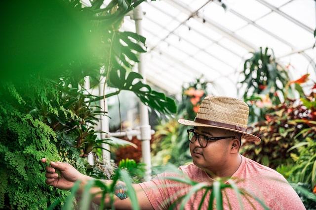 John Melicor, propietario de Urban Plant Shop, en un invernadero